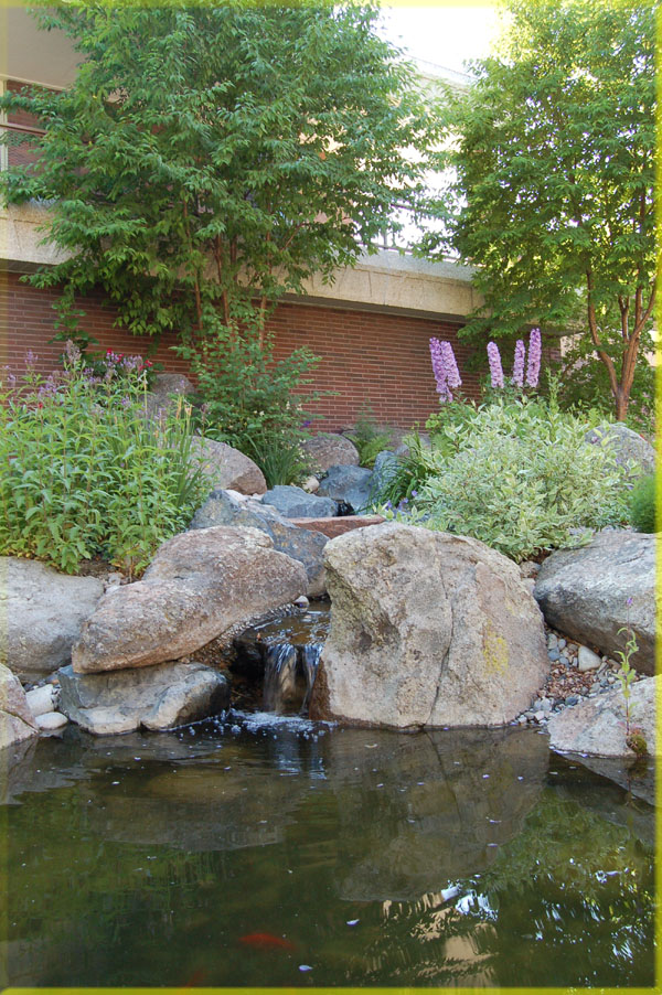 Montana Landscape Design with Water feature